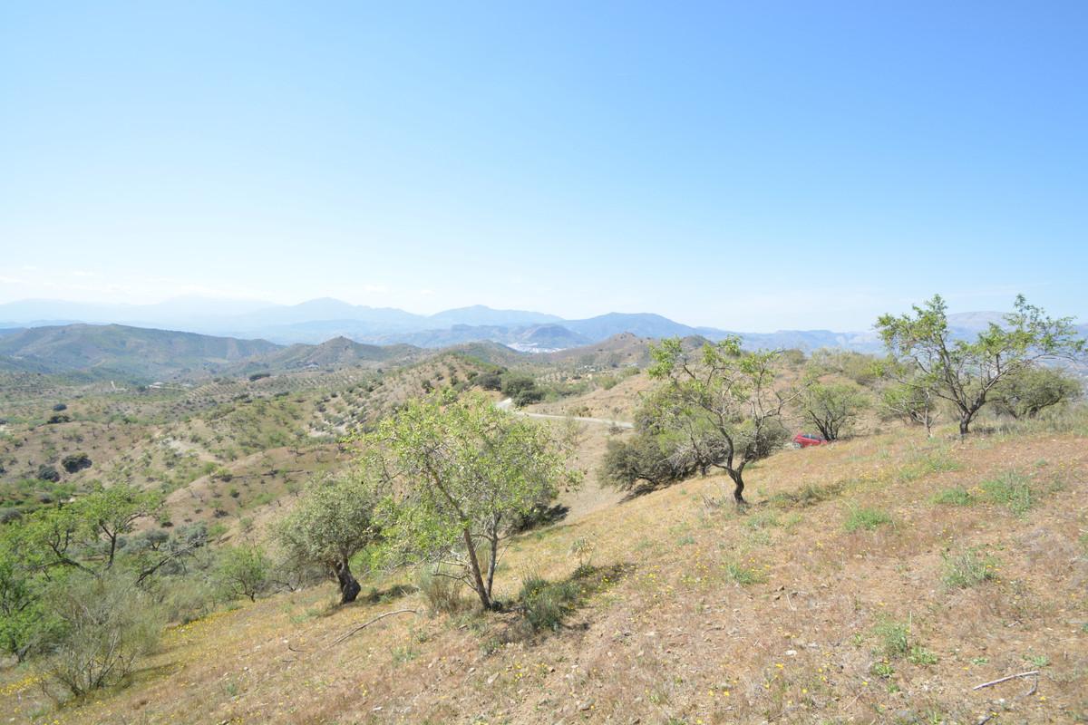Terreno  Terreno en venta   en Alora