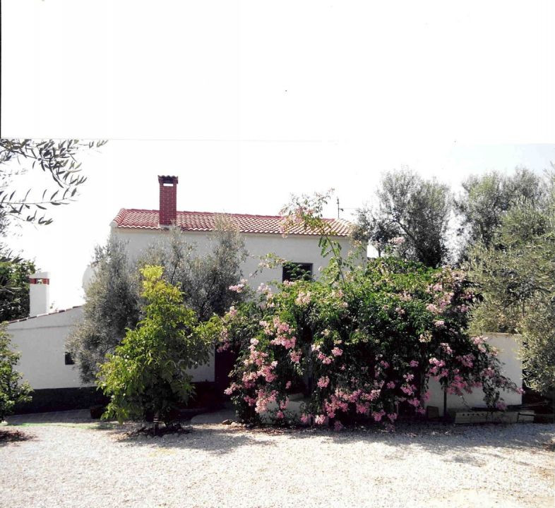 Pretty cottage, garden with fruit and olive trees, fireplace, sewage connection, great views, good a,Spain