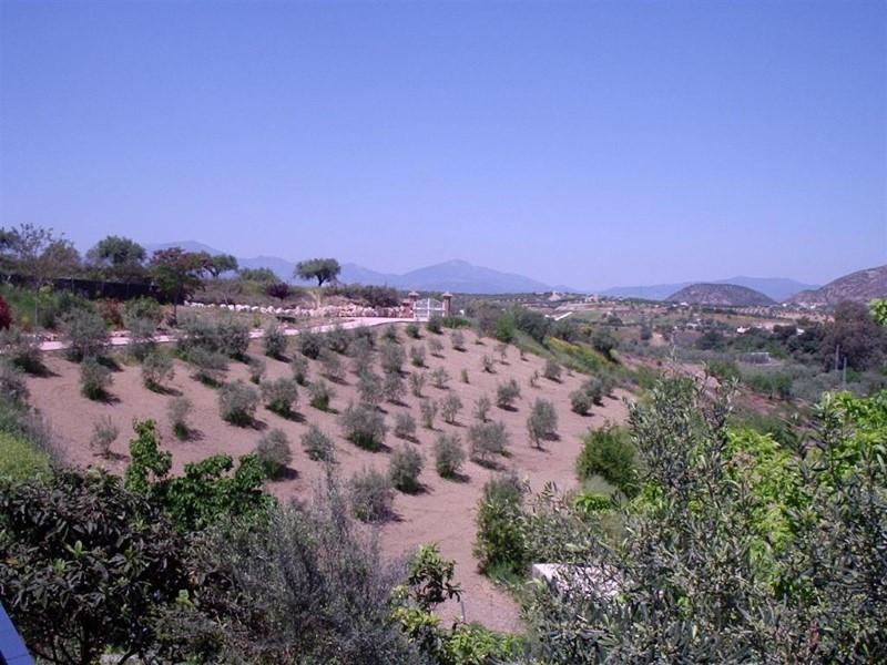 Villa Finca à Alhaurín de la Torre, Costa del Sol