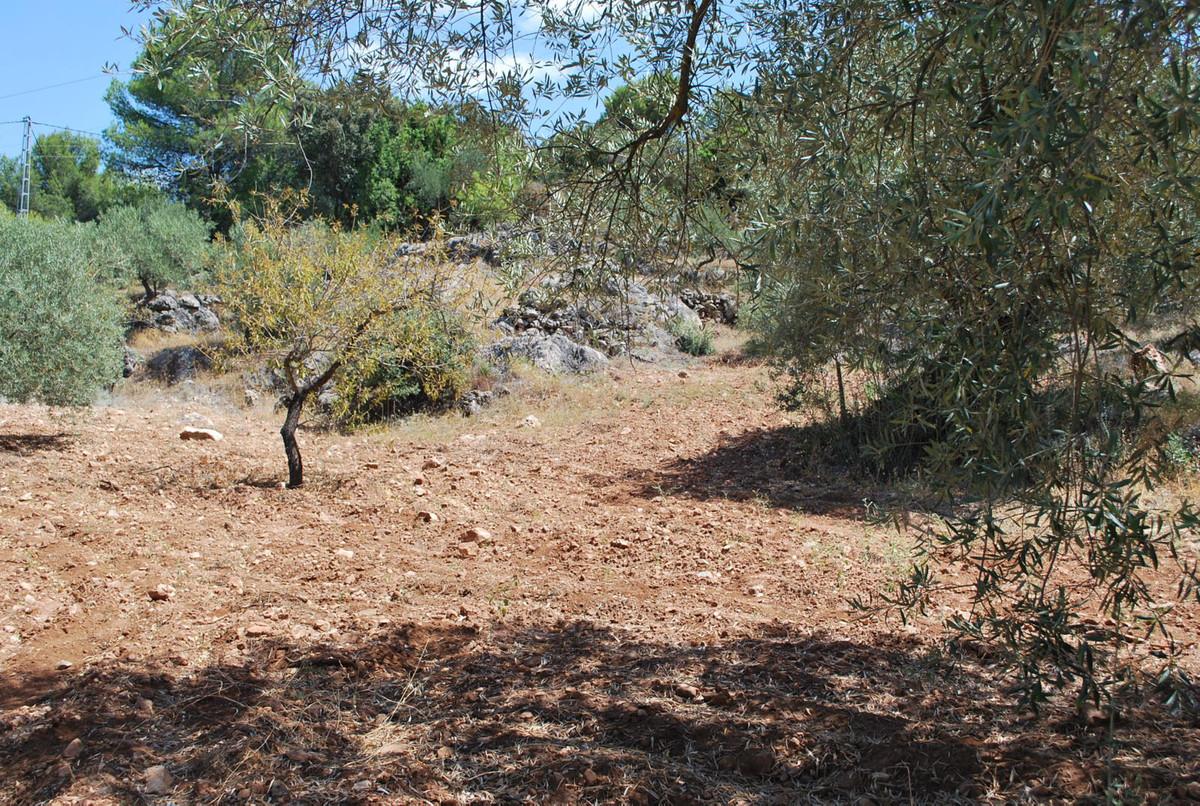 Plot, Land  for sale    en Monda
