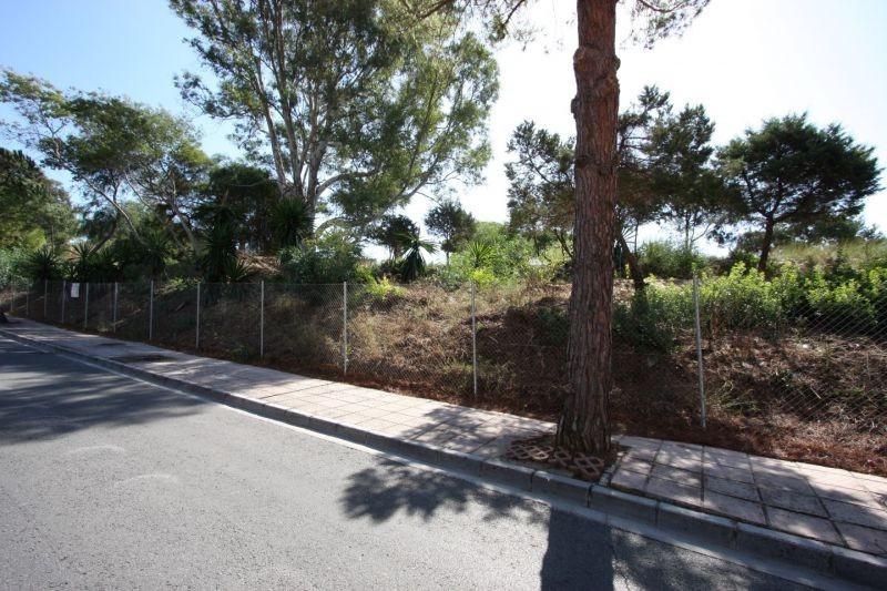 Terrain  Terrain en vente   à Elviria