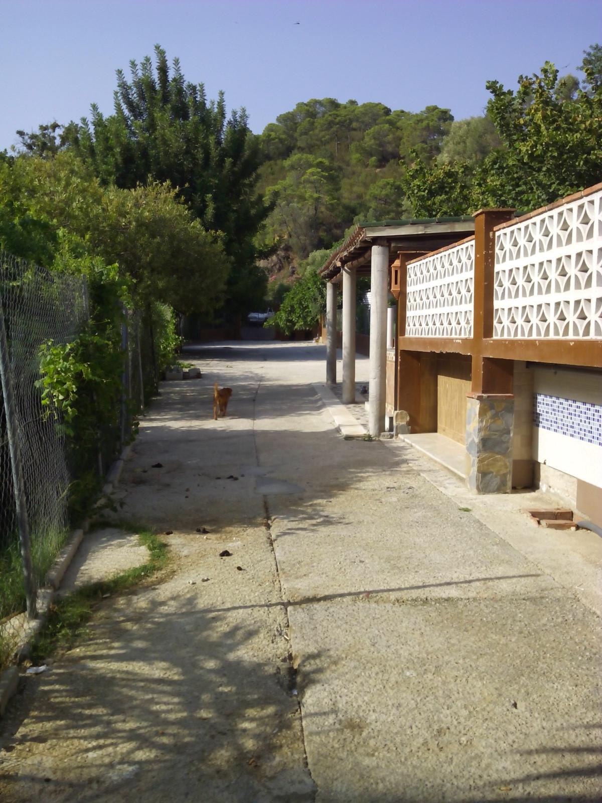 Villa, Finca  en vente    à El Padron