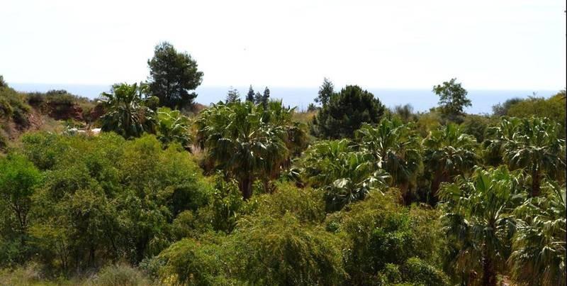 Plot Residential in The Golden Mile, Costa del Sol