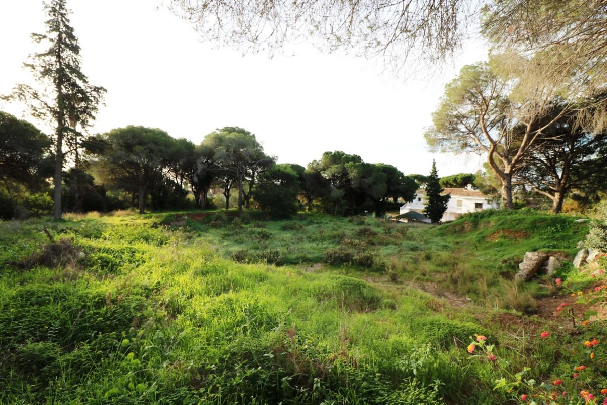 Plot  Residential for sale   in Las Chapas