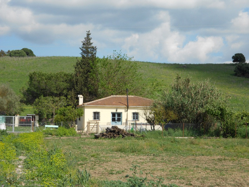 Villa  Finca for sale   in