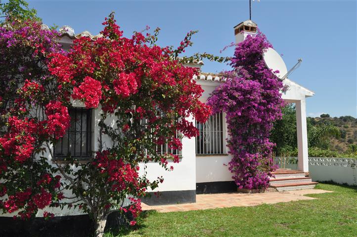 Villa  Individuelle en location  à Calahonda