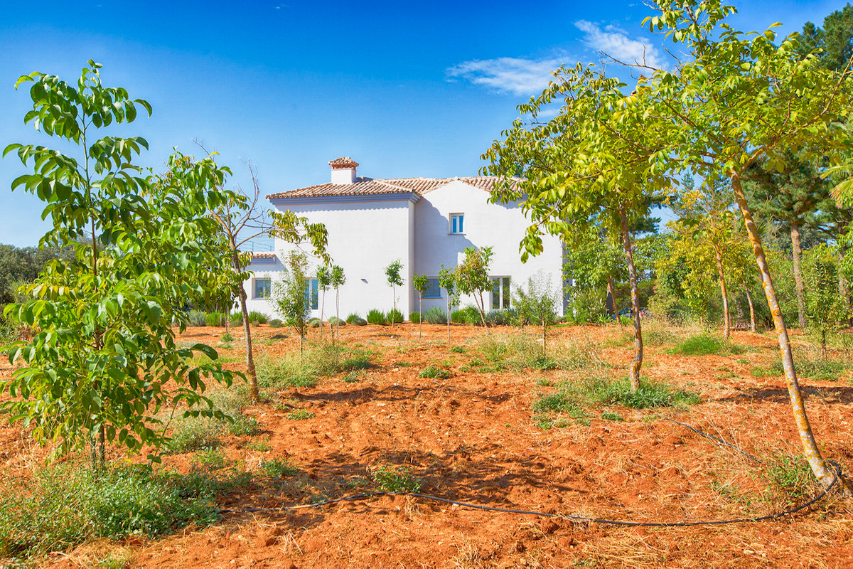 This is a rare opportunity to purchase an established country estate of 3 hectares (flat land) plant,Spain
