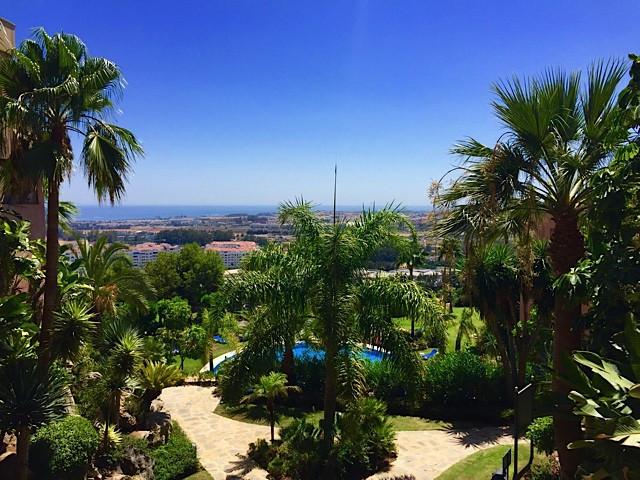 Commerce, Bureau  en vente    à Marbella