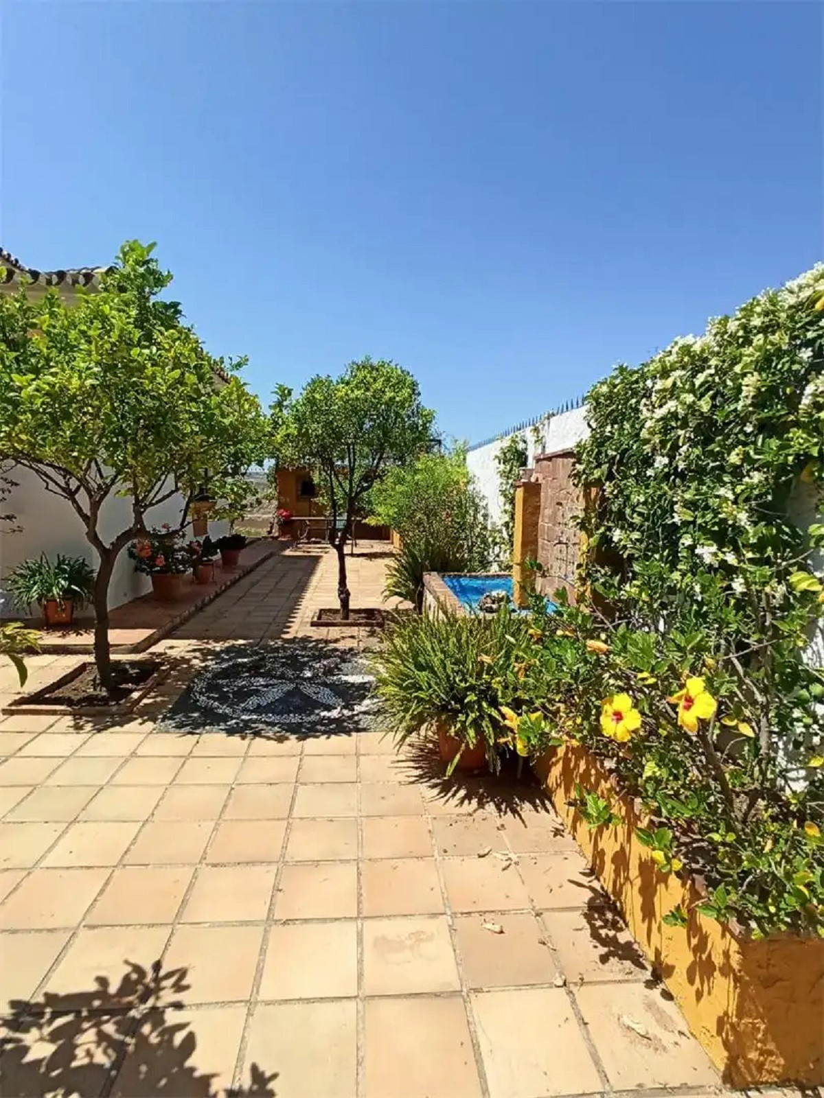House en Arroyo de la Miel R3880978 9