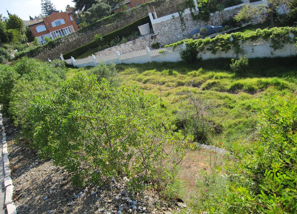 Residential Plot in El Rosario