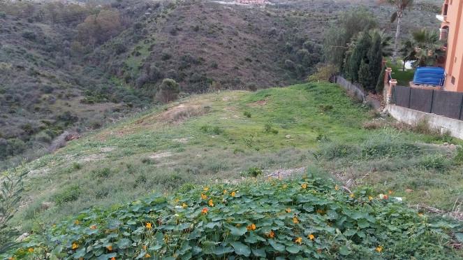 Wohngrundstück zu verkaufen in Río Real R2569142
