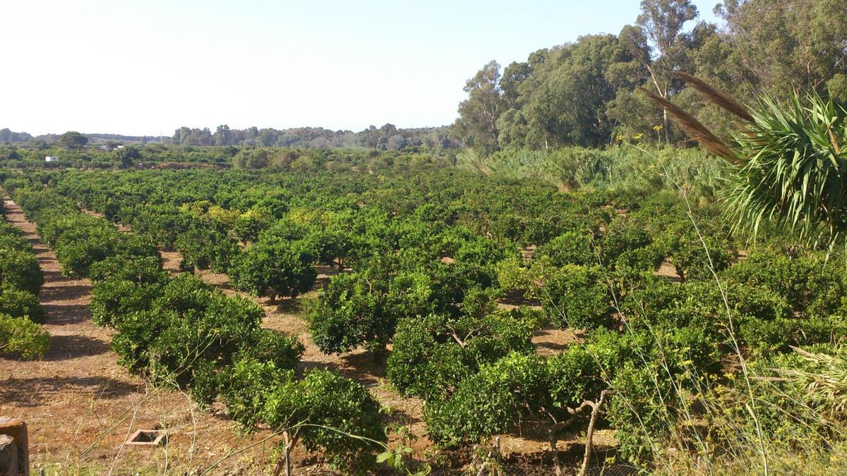 Plot/Land for sale in San Enrique, Costa del Sol