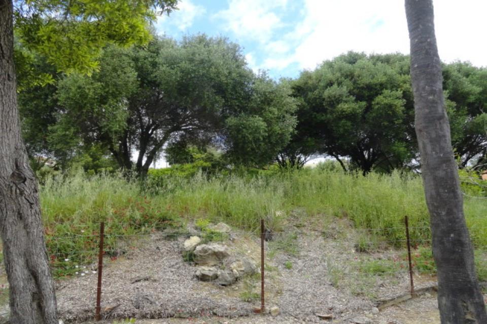 Plot/Land for sale in Sotogrande Alto, Costa del Sol