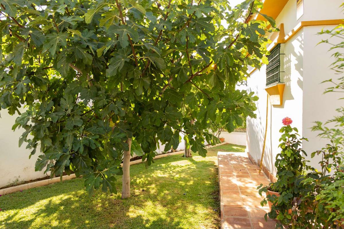 House in Alhaurín de la Torre R3788692 47