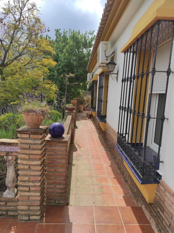 House in Alhaurín de la Torre R3838015 37