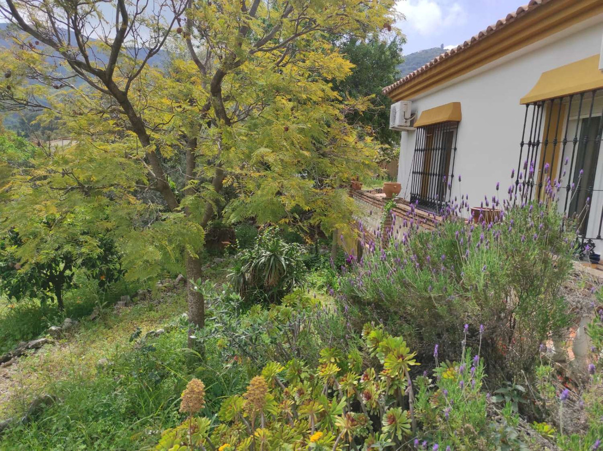 House in Alhaurín de la Torre R3838015 38