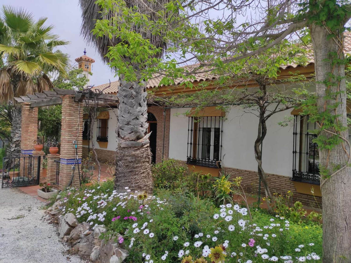 House in Alhaurín de la Torre R3838015 46