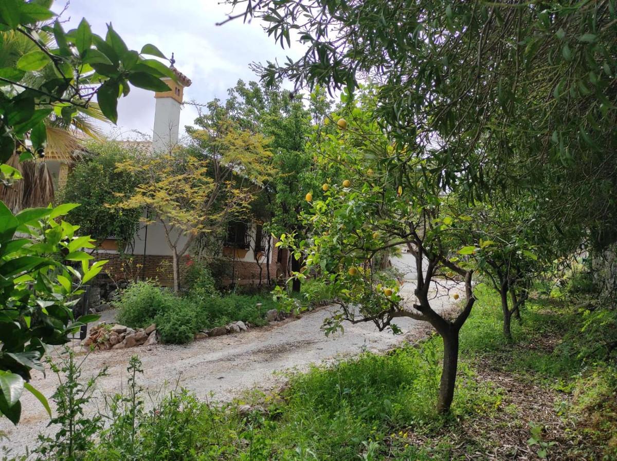 House in Alhaurín de la Torre R3838015 48