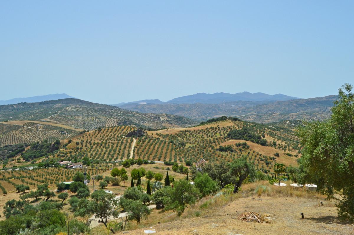 House in Alozaina R3660998 44