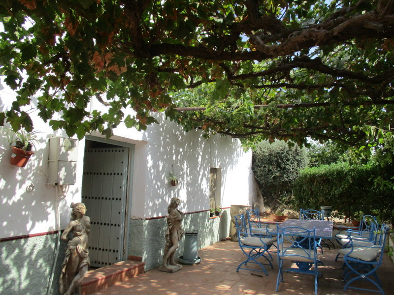 House in Alora R3259816 22