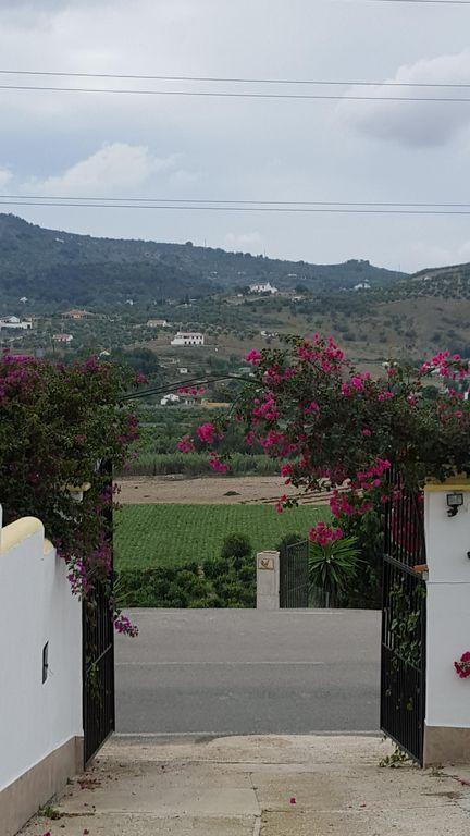 House in Alora R3175363 34