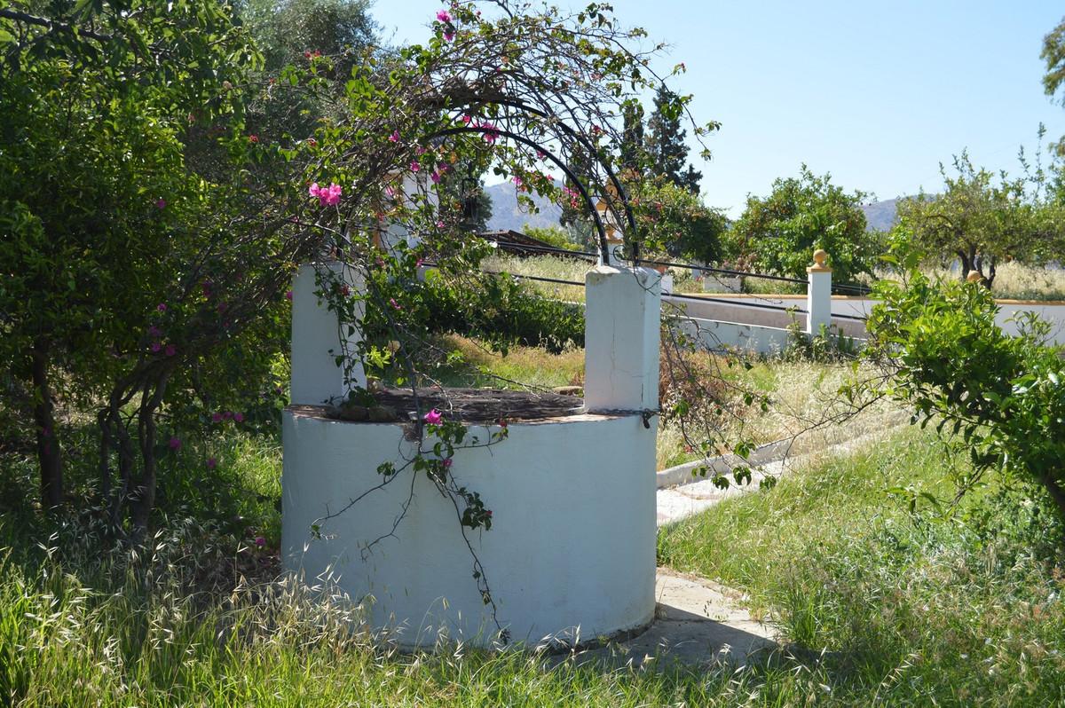 House in Alora R3175363 36