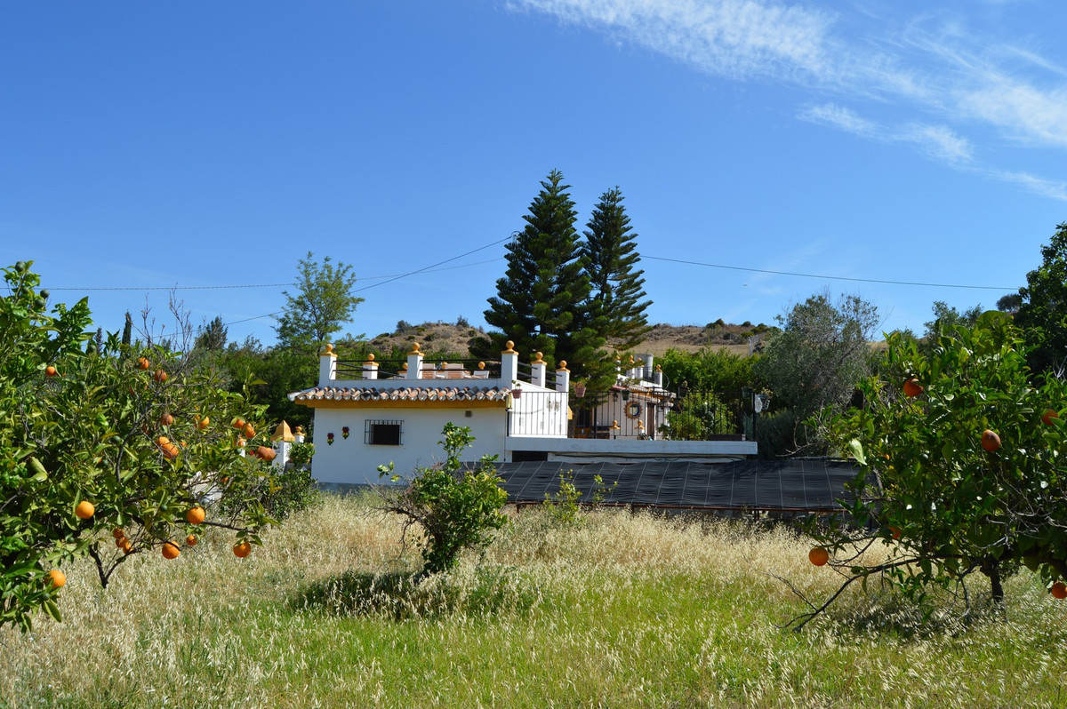 House in Alora R3175363 6