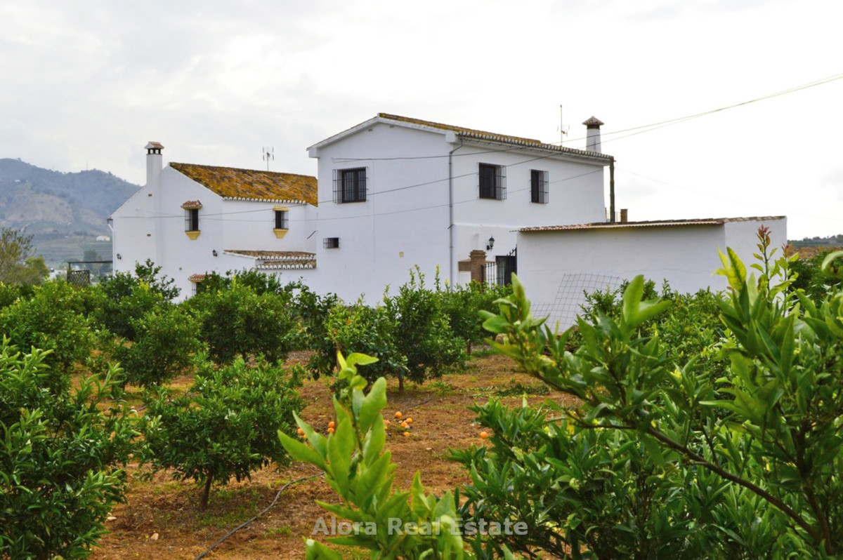 House in Alora R2559101 38
