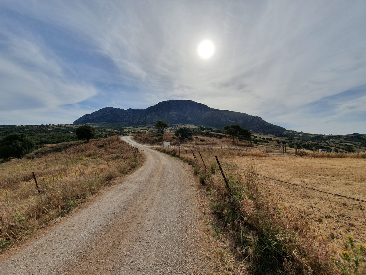 Terrain, Terrain  en vente    à Casares Pueblo