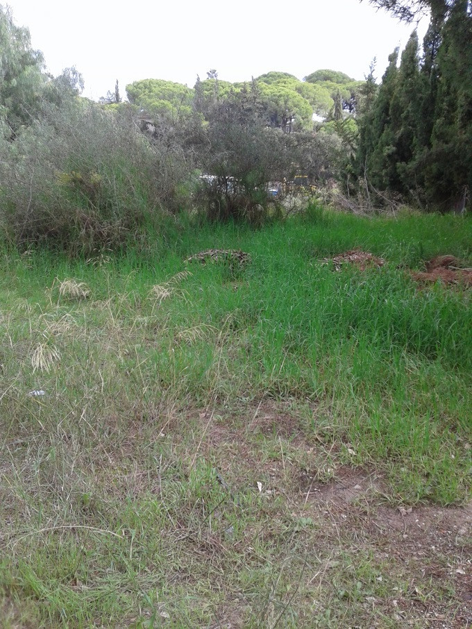 Terreno  Residencial en venta   en Elviria