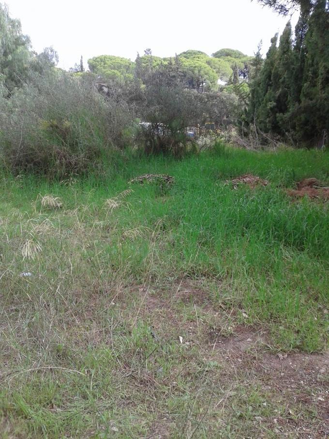 Terrain Résidentiel en vente à Elviria R3287461