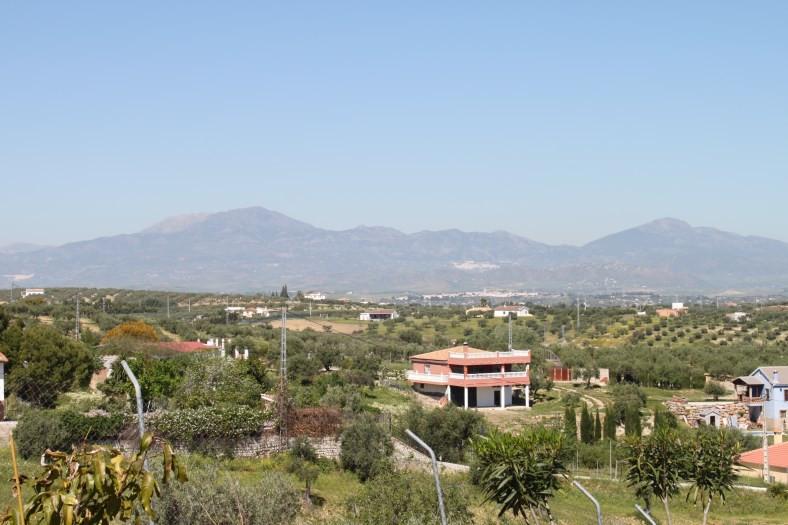 House in Alhaurín el Grande R3465358 32