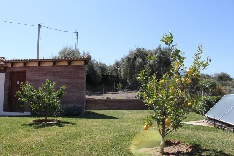 House en Alhaurín el Grande R3465358 49