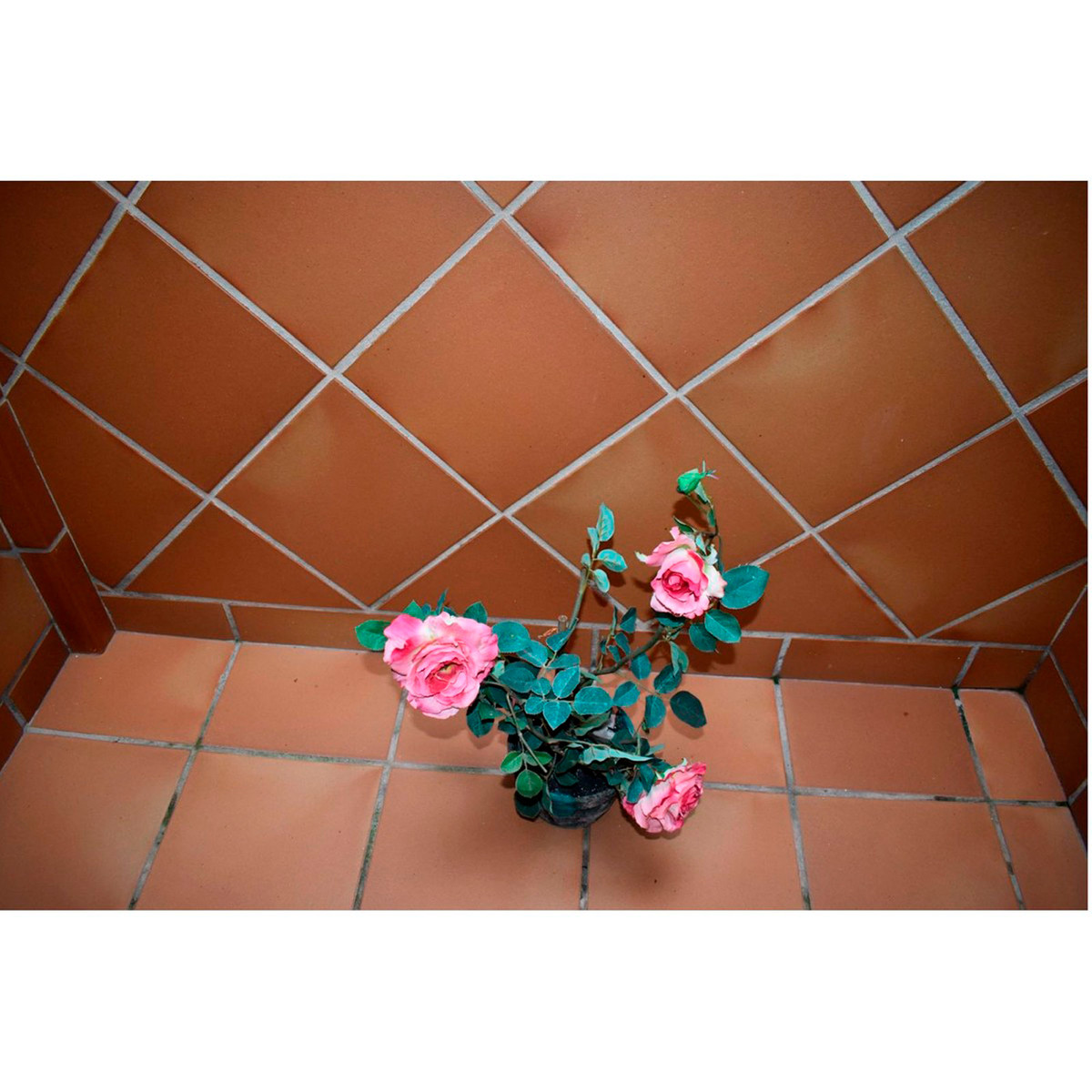 House en Alhaurín el Grande R3854968 31