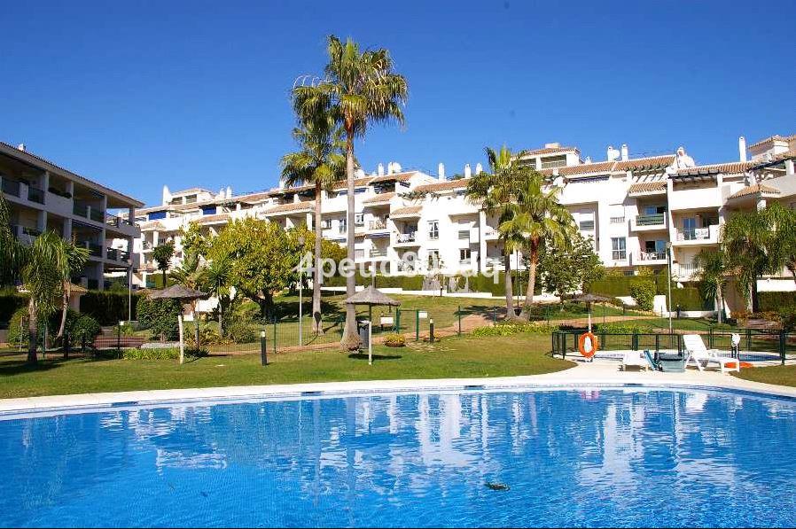 Apartamento Planta Media en Nueva Andalucía