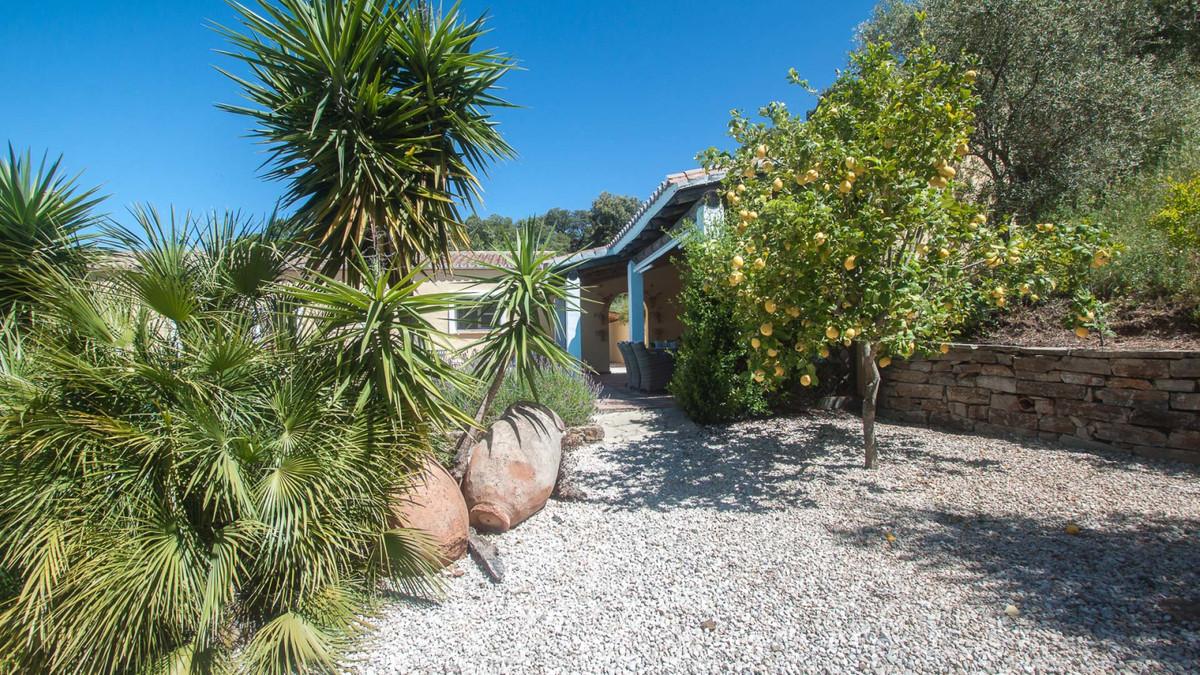 House in Algatocin R3431773 18