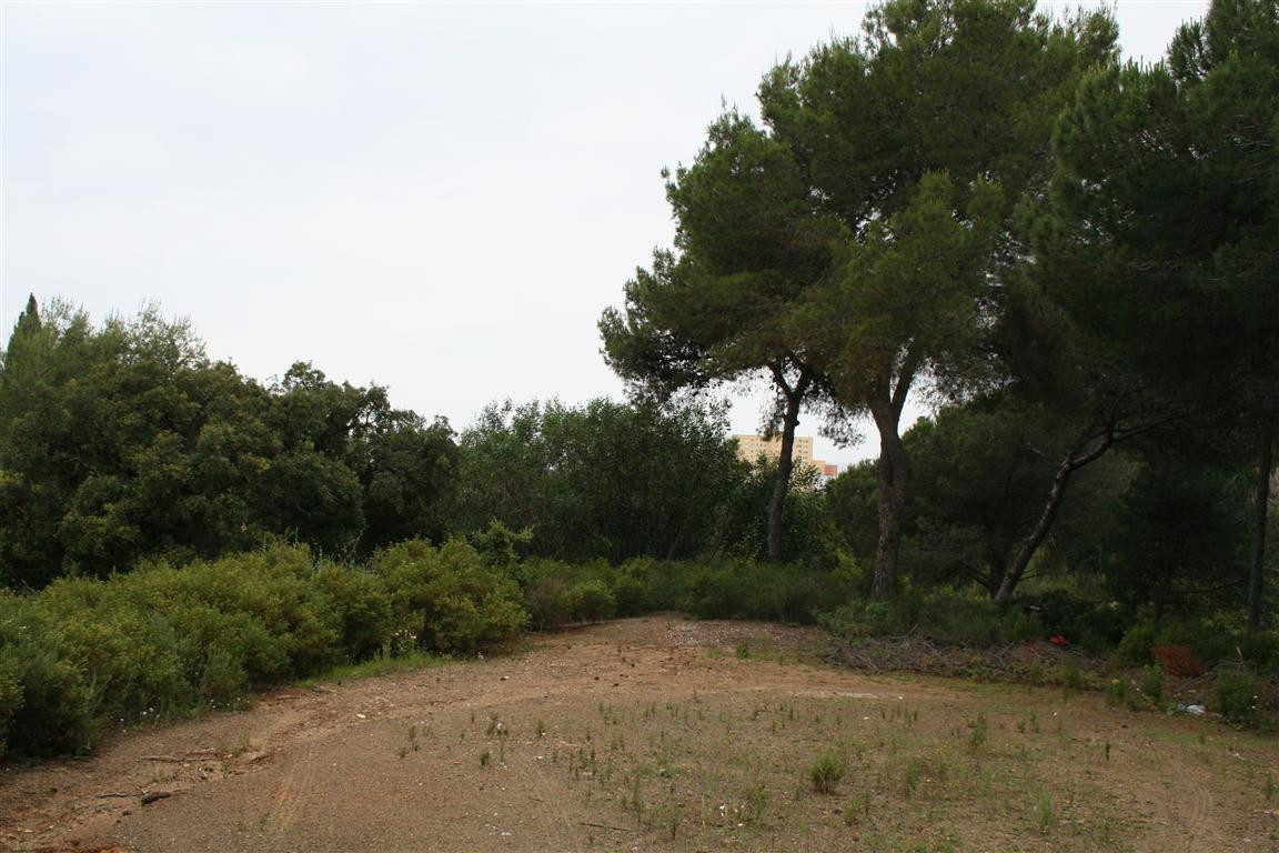 Residential Plot for sale in Hacienda las Chapas - Marbella East Residential Plot - TMRO-R204266