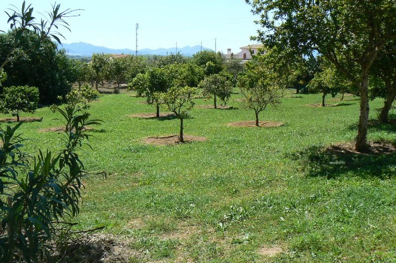 Villa Finca Pizarra Málaga Costa del Sol R2168816 3
