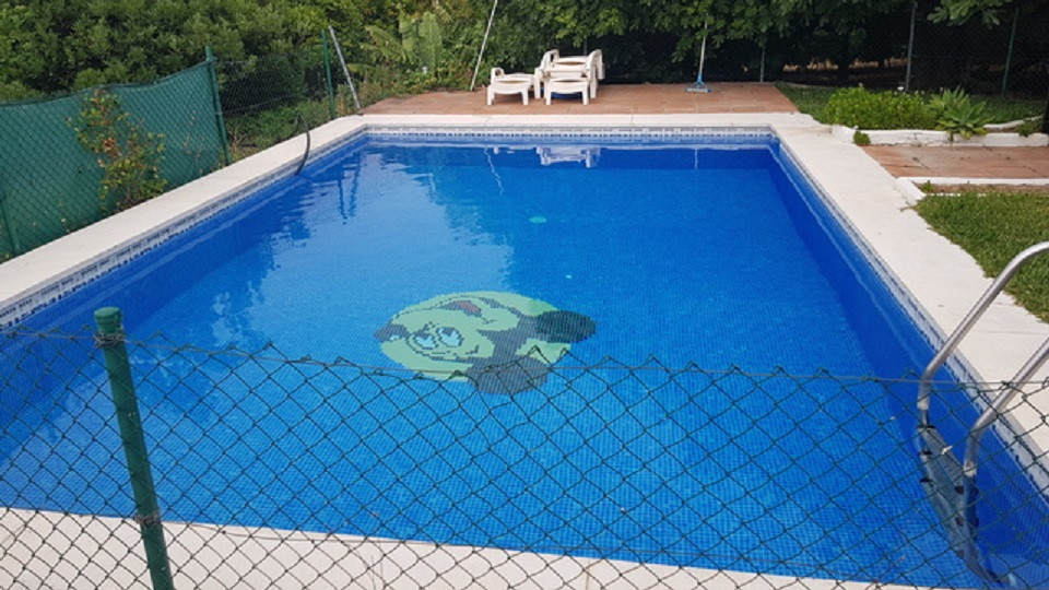 Villa Finca for sale in Estepona, Costa del Sol