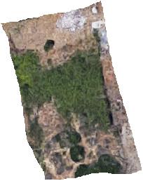 Residential Plot, Estepona, Costa del Sol. Garden/Plot 587 m².  Setting : Frontline Golf, Close To G,Spain