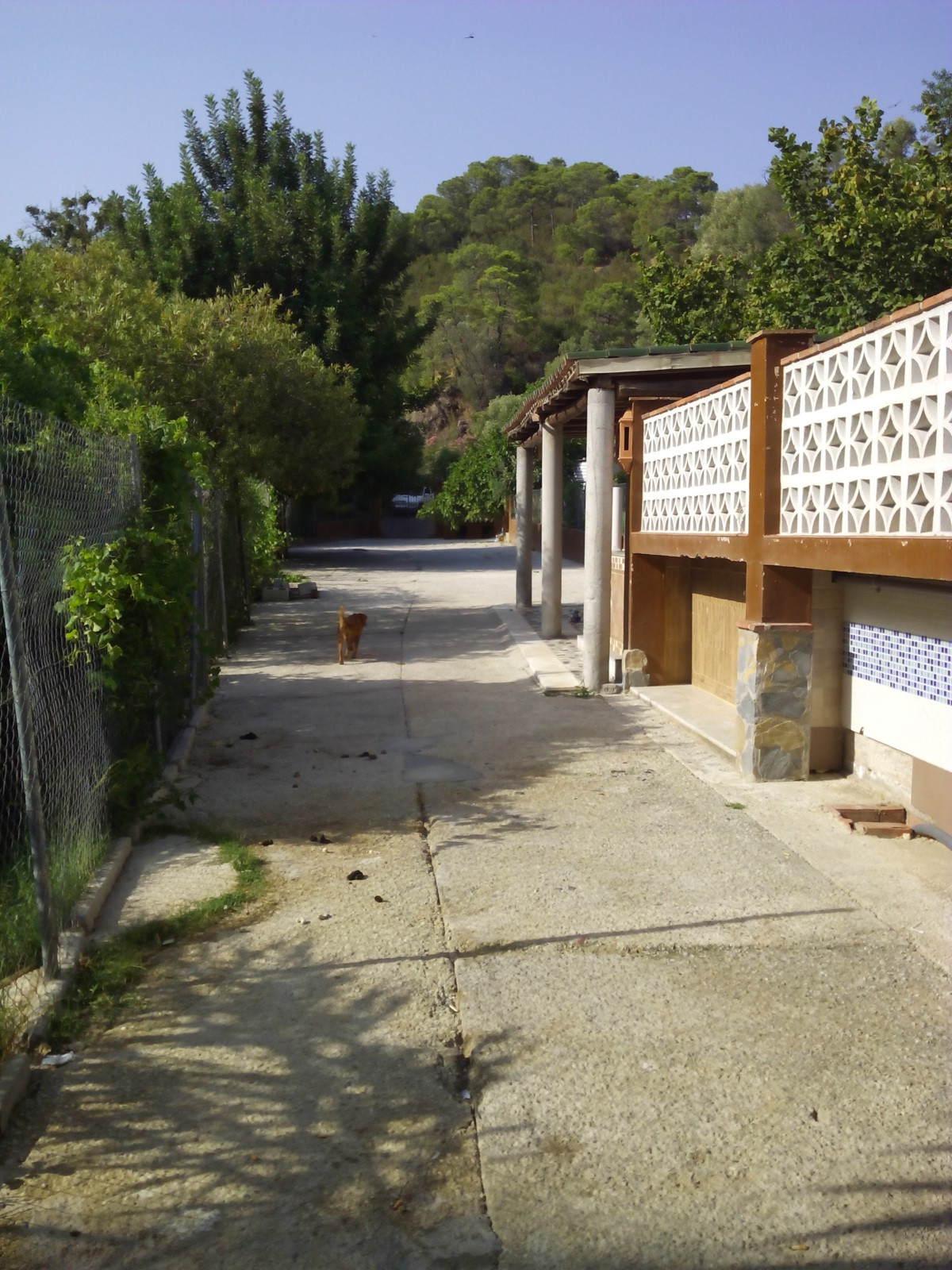 Large country house near the river with pool , fruit trees, garden , several animal enclosures , a b,Spain