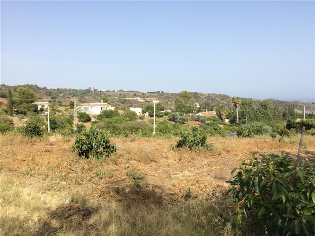Land, Estepona, Costa del Sol. Garden/Plot 5000 m².  Setting : Country. Orientation : South East. Vi,Spain
