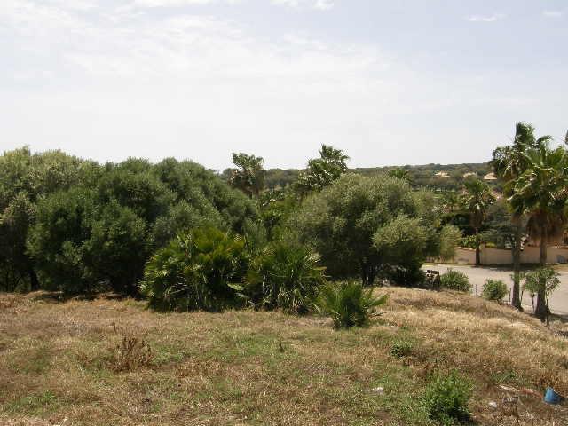 Sotogrande Alto: courner plot with permission to construct a detached villa.,Spain