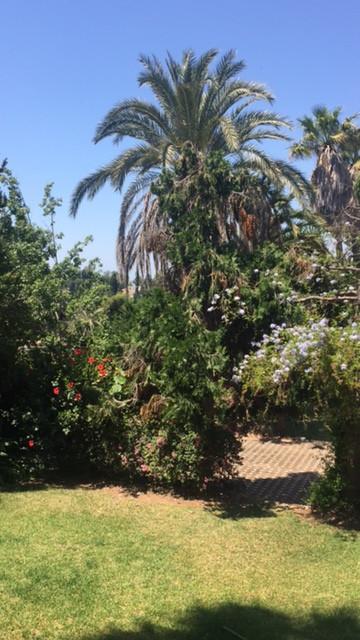 Residential Plot, The Golden Mile, Costa del Sol. Garden/Plot 4000 m2;.  Setting : Close To Port, Cl,Spain