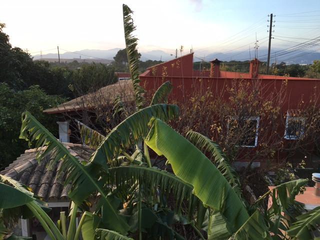 Finca de 4000 m2  situada en la carretera vieja de Bunola (MARRATXI) con casa de 122 m2 con dos salo,Spain