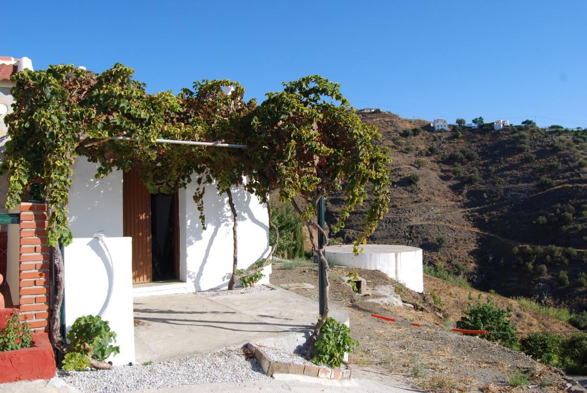 Land Torrox � Frigiliana  Large plot with olive trees and casita Large plot with olive trees and sev,Spain