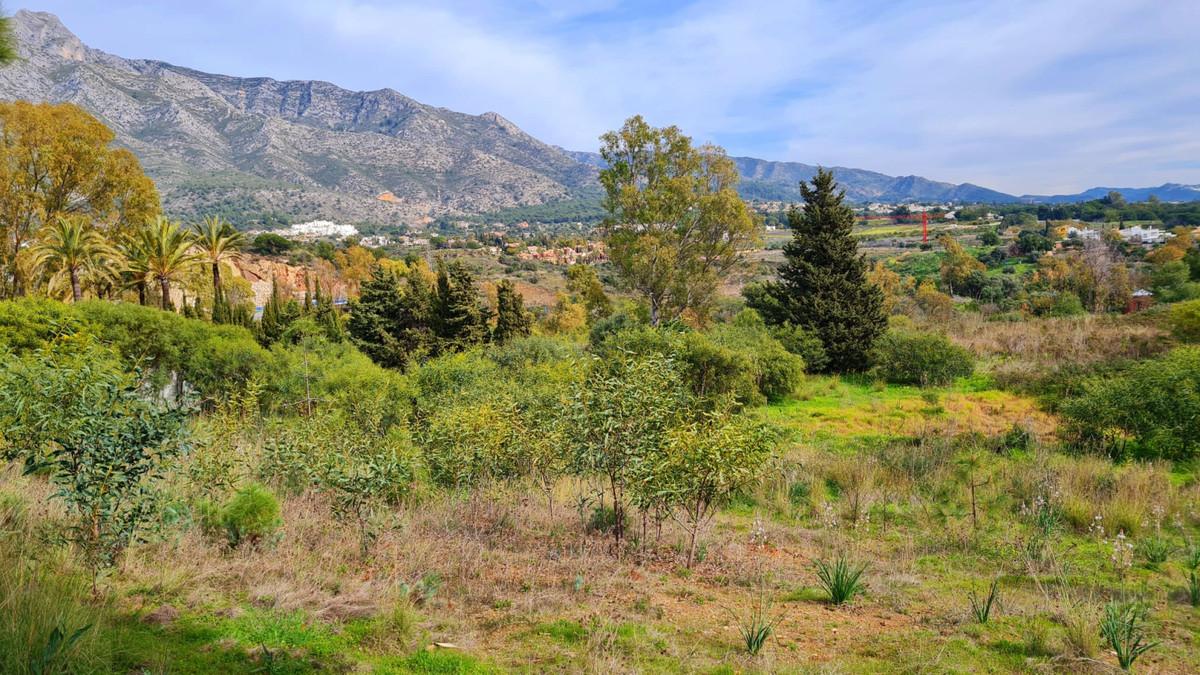 Residential Plot, The Golden Mile, Costa del Sol. Garden/Plot 7199 m².  Setting : Close To Golf, Clo,Spain