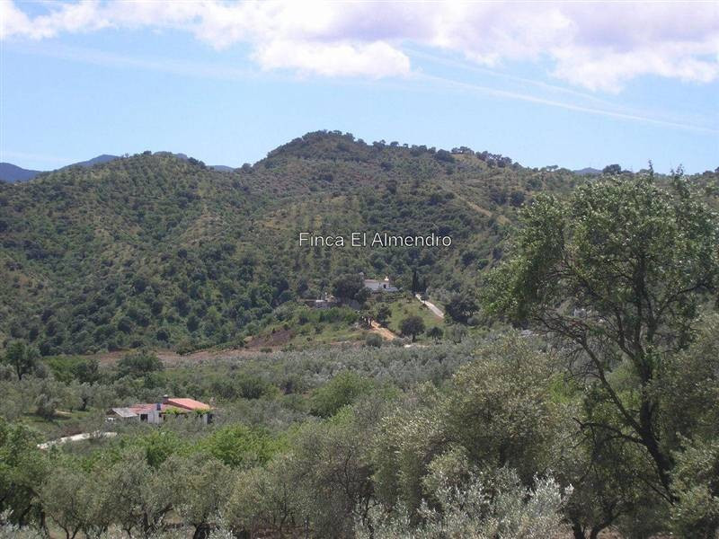 Charming country villa between Guaro & Coin - only 25 min. from Marbella and 35 min. from Malaga,Spain