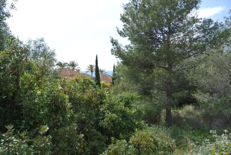 Residential Plot for sale in Sierra Blanca