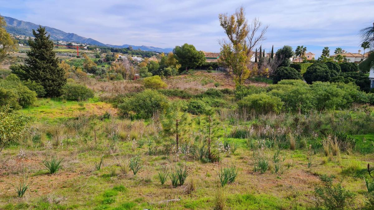 Residential Plot for sale in The Golden Mile